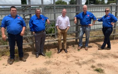 THE SHOW WILL GO ON – ALMOST $100,000 FOR ALSTONVILLE SHOW SOCEITY